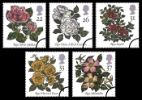 View enlarged 'Roses 1991' Image.