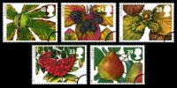 View enlarged '4 Seasons: Autumn' Image.