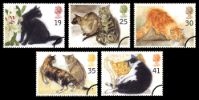View enlarged 'Cats' Image.