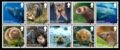 View enlarged 'Mammals' Image.