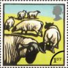 11.01.2005 Farm Animals: 1st